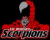 Wedemark Scorpions