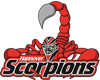 Hannover Scorpions 100x80