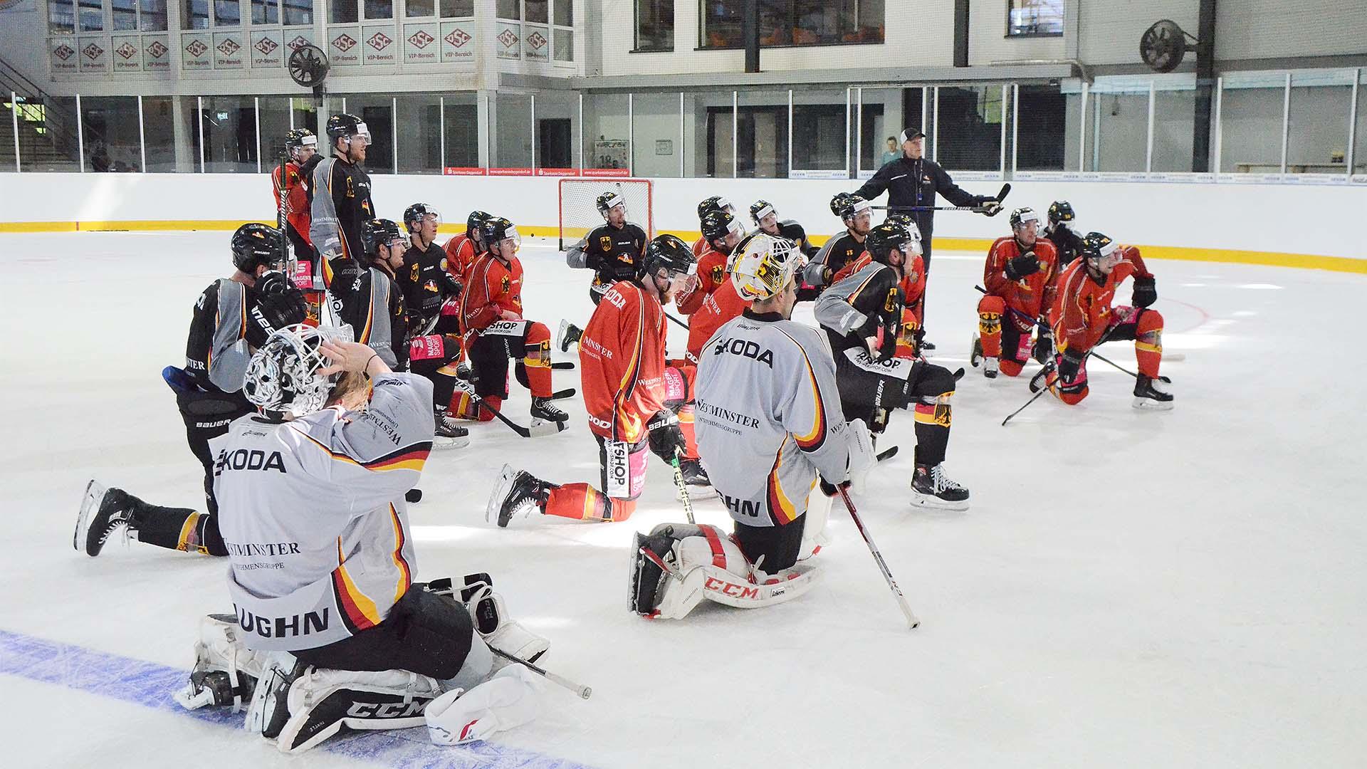 Eishockey Deggendorf